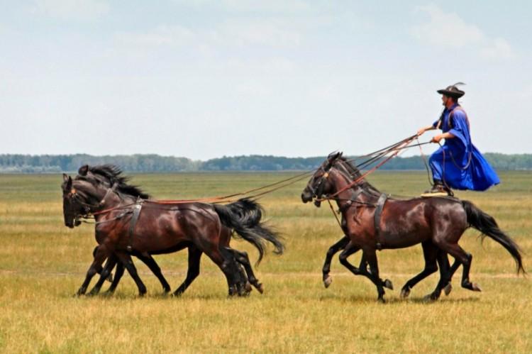 A hortobágyi cowboyokra Amerikában is kíváncsiak