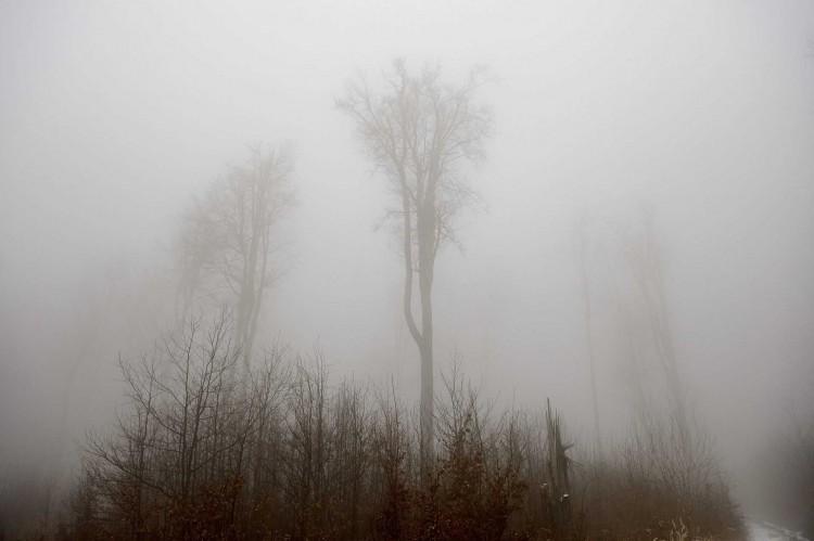 Tartós, sűrű köd miatt adtak ki riasztást Hajdú-Bihar megyére