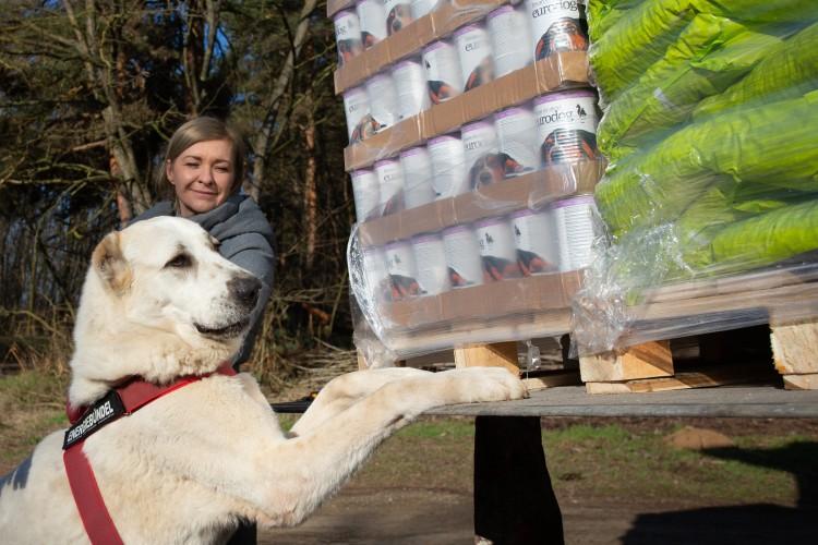 Kétezer kilogramm állateledelt adományoztak a debreceni telepnek