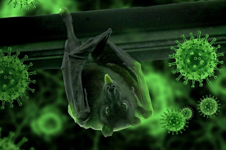 Fény az alagút végén? 459 új fertőzöttet azonosítottak