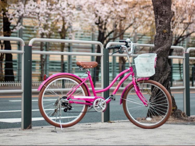 Hajdúhadháziak lophatták a bicikliket Debrecenből
