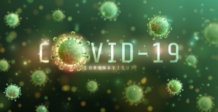 A koronavírus árnyékában: az észleléstől az oltásig