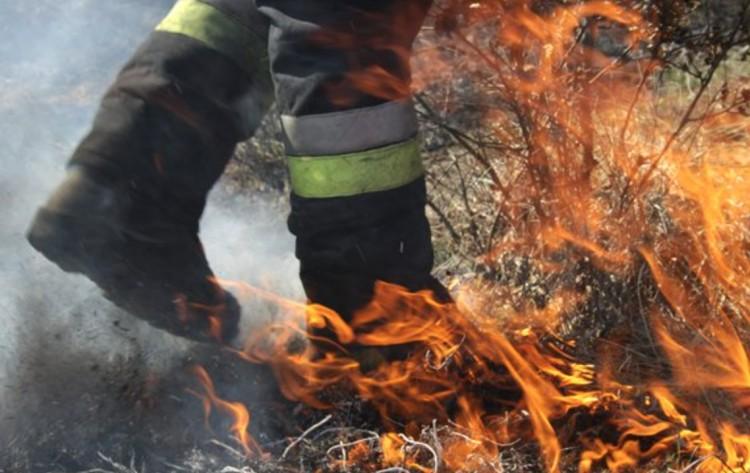 Egy hektáron égett a gaz Hajdúsámsonban