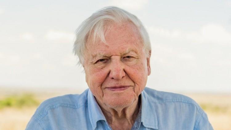 95. születésnapját ünnepli David Attenborough