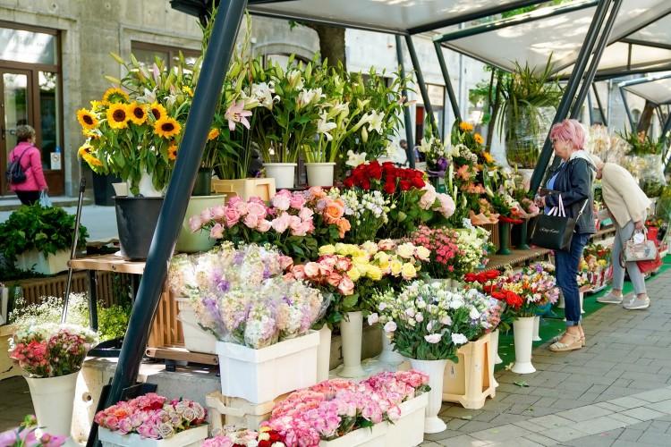 Csapó utcai virágpiac: ha pénz van, minden van