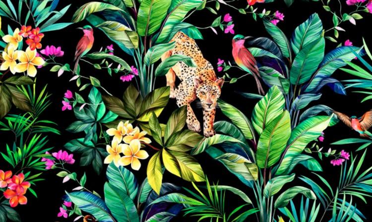 Dzsungellé válik a Nagyerdő!