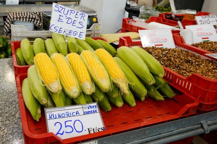 Brutálisan drága, és nem is lesz olcsóbb a zöldség, a gyümölcs