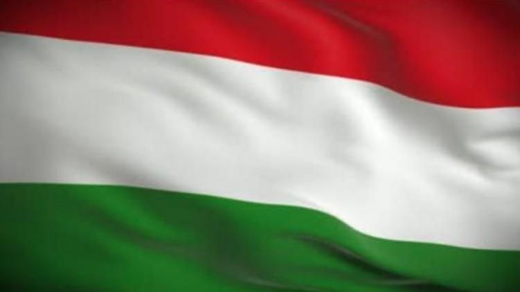 Úszó és vívó viszi a magyar zászlót az olimpián