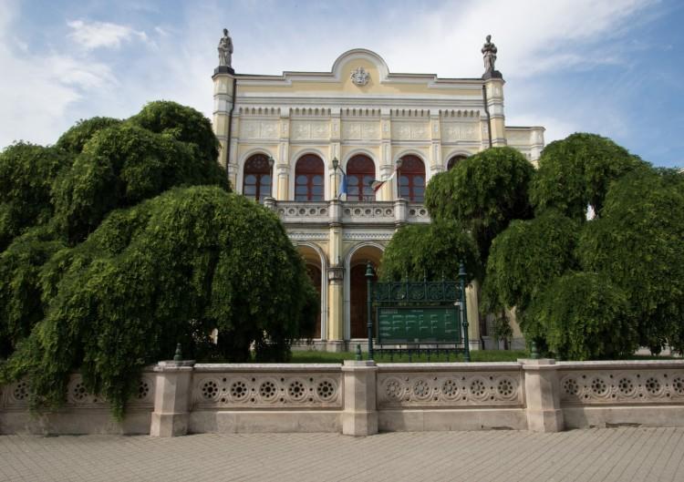 Nagy idők tanúi: döntőbe jutott Debrecen két gyönyörű fája