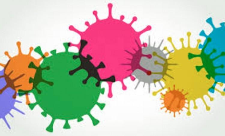 Járvány: 246 új fertőzöttet igazoltak