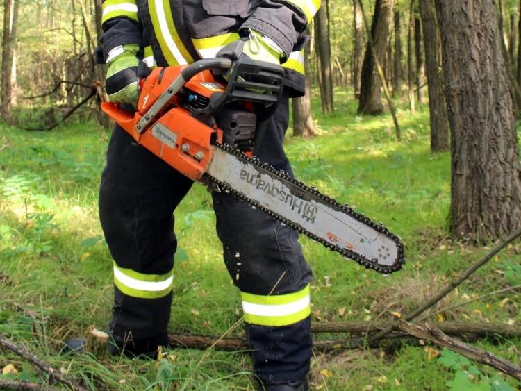 Pocsajban bolt égett, Debrecenben fák dőltek
