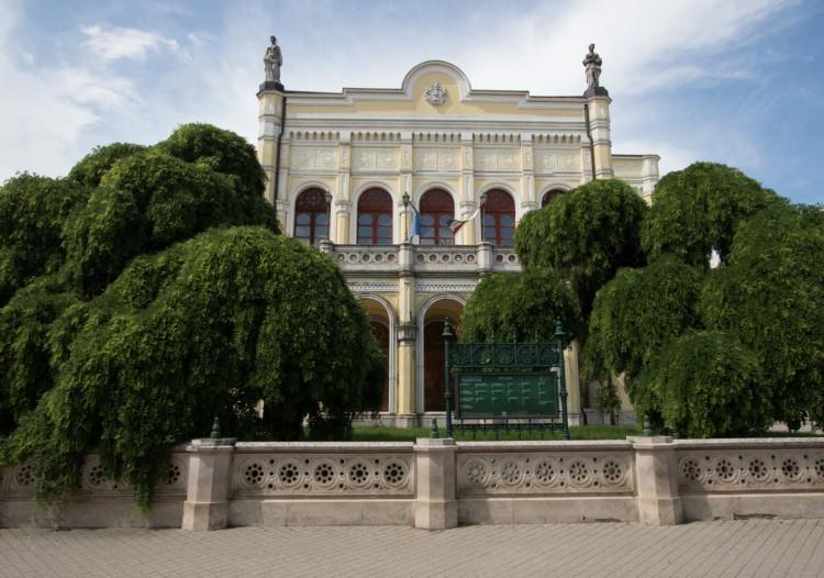 Nagy idők tanúi: Debrecen két japánakáca az év fája!