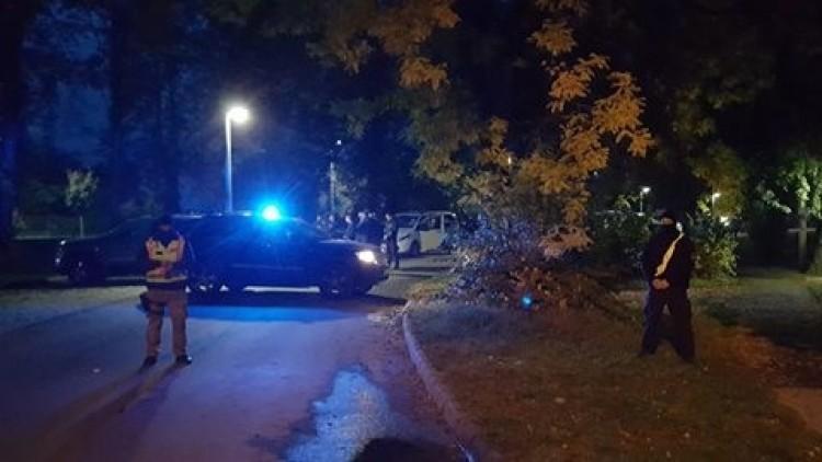 Elfoghatták a Teréz körúti robbantót