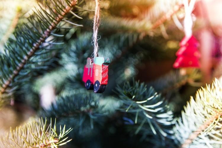 Elszállítják a karácsonyfákat