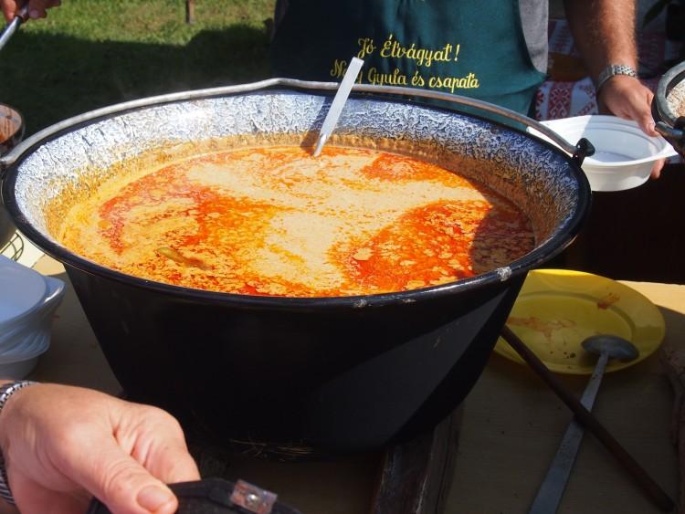 Recept: korhely halászlé, ahogy Nagy Gyula készíti