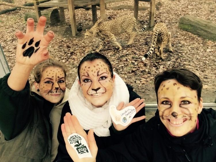 Fesd magad nagymacskának! - vár a Nyíregyházi Állatpark