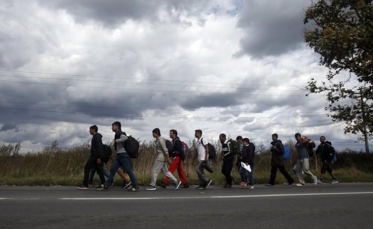 Illegális bevándorlás - nincs összhang