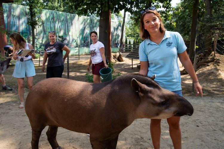 Nyíregyházi nyugdíjas? Ingyen mehet az állatkertbe!