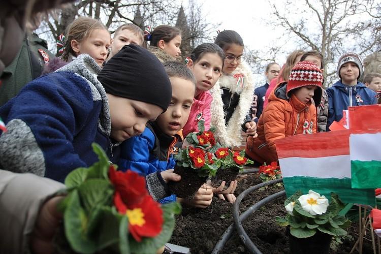 Gyerekek szépítették meg Nyíregyháza főterét