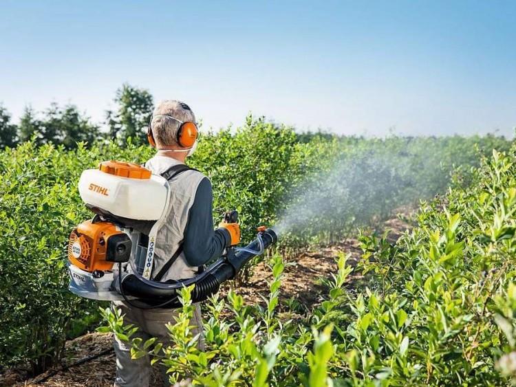 Így védik a kártevőktől a növényeket Nyírbátorban