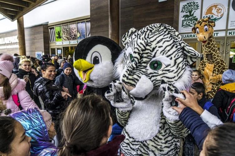 16 ezer látogatót vonzott a Nyíregyházi Állatpark 100 forintos napja