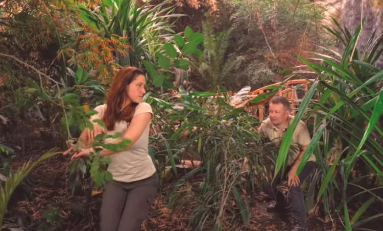 Zseniális videót készítettek a Nyíregyházi Állatpark dolgozói