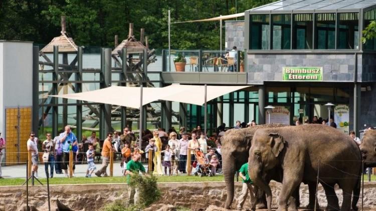 A Nyíregyházi Állatpark hamarosan megtelik látogatóval