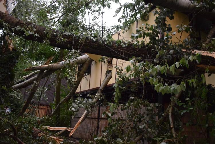 Hatalmas károkat okozott a vihar Gergelyiugornyán +Fotók