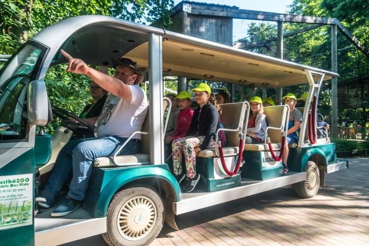 Városnéző kisvonatot venne az állatkert Nyíregyházán